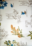 Ткань для штор Mediterraneo Seed 02- Сатин