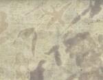 Ткань для штор AEOLIAN BREEZE - OYSTER - Col.K00046  Kohro