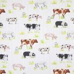 Ткань для штор 5803-587 Country Fair Prestigious