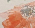 Ткань для штор 110563-5 Alison Kobe