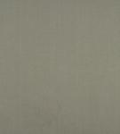 Ткань для штор AW100-03 Cole Ashley Wilde