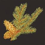 Ткань для штор F96335 Castle Pine Thibaut
