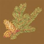 Ткань для штор F96336 Castle Pine Thibaut