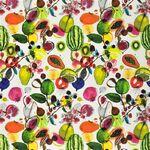 Ткань для штор FCL2274-01  Nouveaux Mondes Christian Lacroix