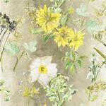 Ткань для штор FDG2204-02  Madhuri Fabrics