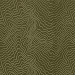 Ткань для штор F0978-12 Fiji Clarke&Clarke