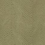 Ткань для штор F0978-21 Fiji Clarke&Clarke