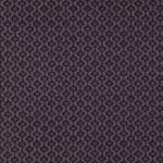 Genii Grail 01-Petunia Genii FR-One