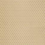 Ткань для штор Thibaut Starburst Woven Beige W72778