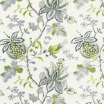 Ткань для штор Thibaut Donegal Printed Fabrics Green and Grey F913006