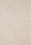 Ткань для штор AW9101 Natural Glimmer Anna French
