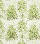 Ткань для штор NCF4133-01 Rossyln Nina Campbell