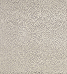 Ткань для штор F6532-05 Eden Matthew Williamson