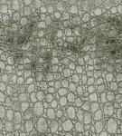 Ткань для штор F6270-06 Sabi Velvets Osborne & Little