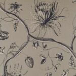 Ткань для штор ZPHA322602 Phaedra Zoffany