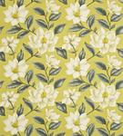 Ткань для штор DAPGGR201 A Painters Garden Sanderson
