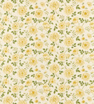 Ткань для штор DAPGRO202 A Painters Garden Sanderson