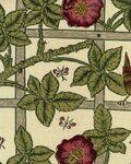 Ткань для штор DMORTR204 The Art of Decoration Morris & Co